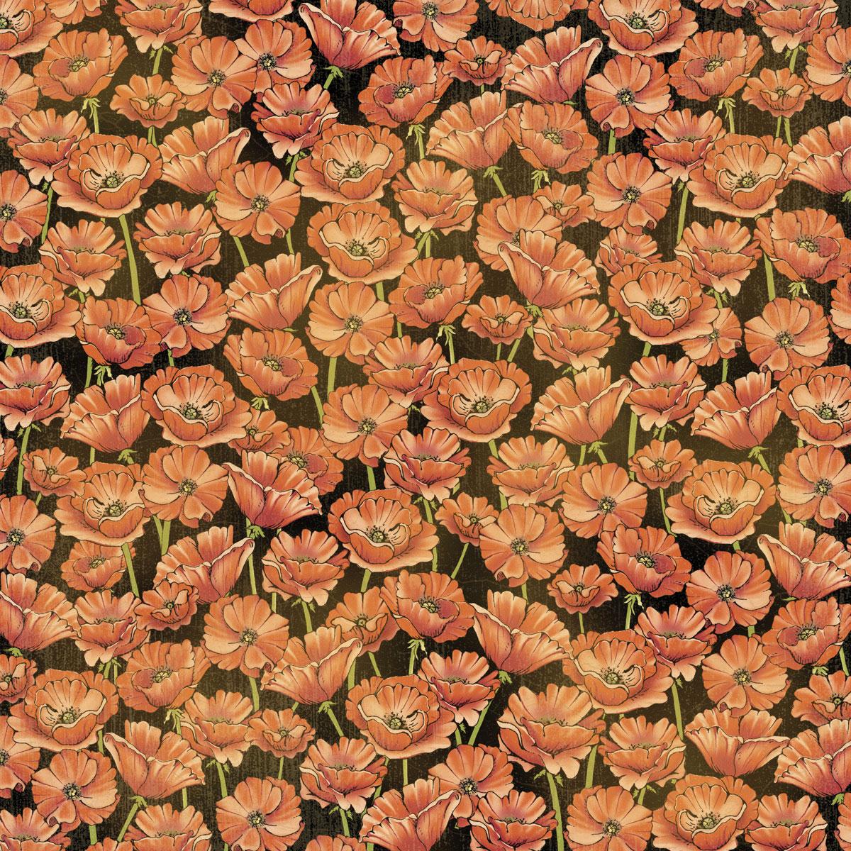Poppy-field-frt