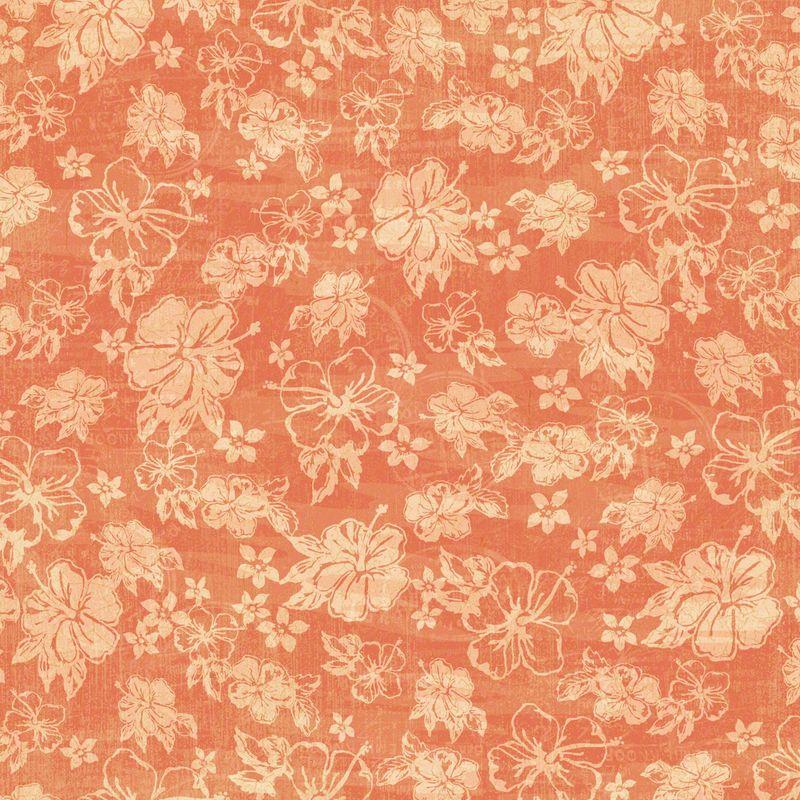 Hibiscus-Heaven-frt-PR-copy