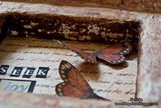 Seek_joy_butterfly