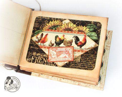 Alberto Juarez Graphic45 FrencCountry 7