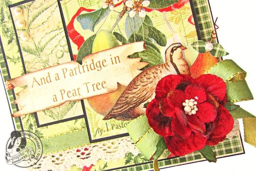 Partridge_in_a_peartree_2_G45