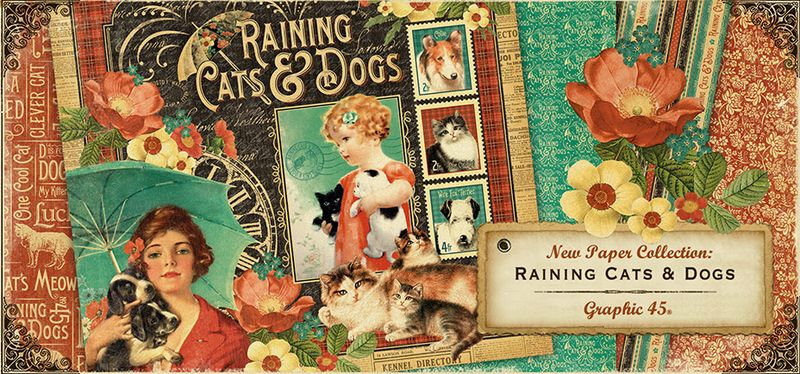 Banner_RainingCatsDogs_large