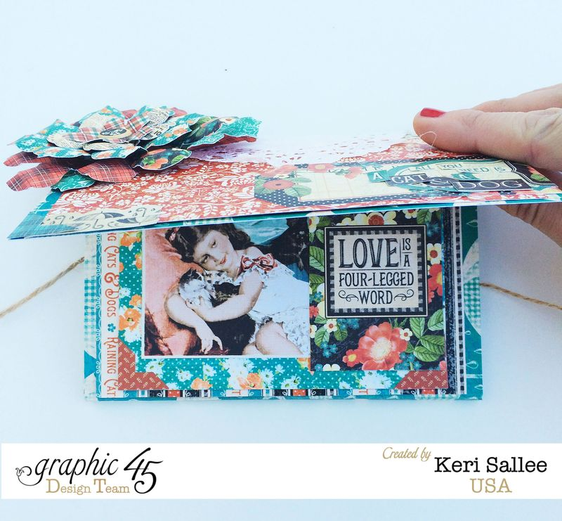 G45_Nov14_Raining Cats and Dogs_Wallet_Open
