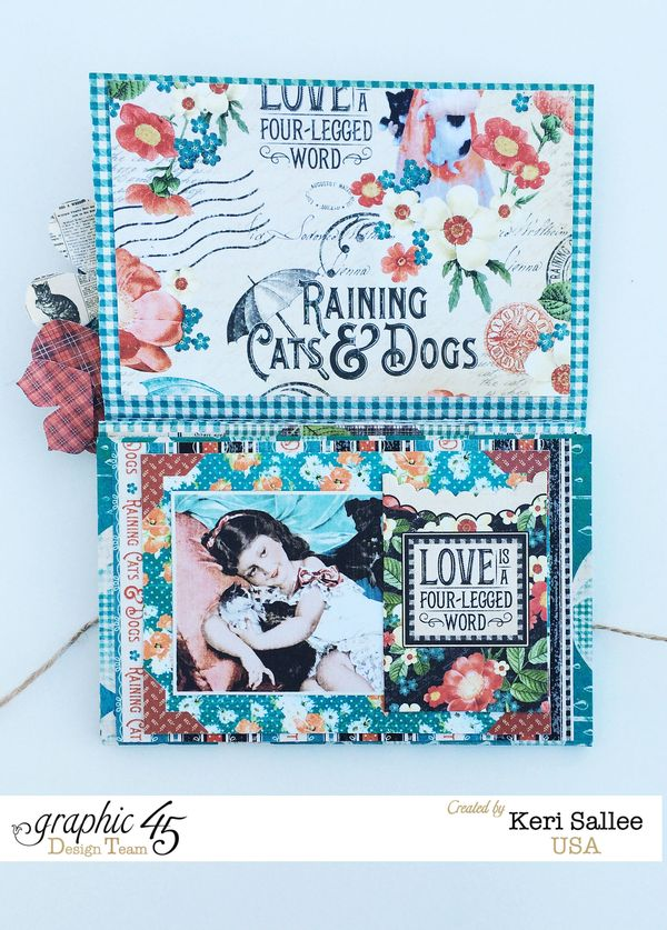 G45_Nov14_Raining Cats and Dogs_Wallet_Full
