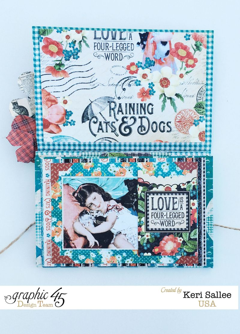 G45_Nov14_Raining Cats and Dogs_Wallet_Open2