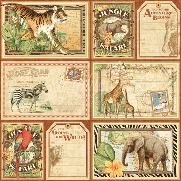Horizontal Safari Adventure Journaling & Ephemera Cards #graphic45