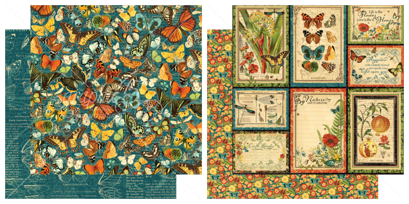 11 & 12  from Nature's Sketchbook, a new collection from Graphic 45