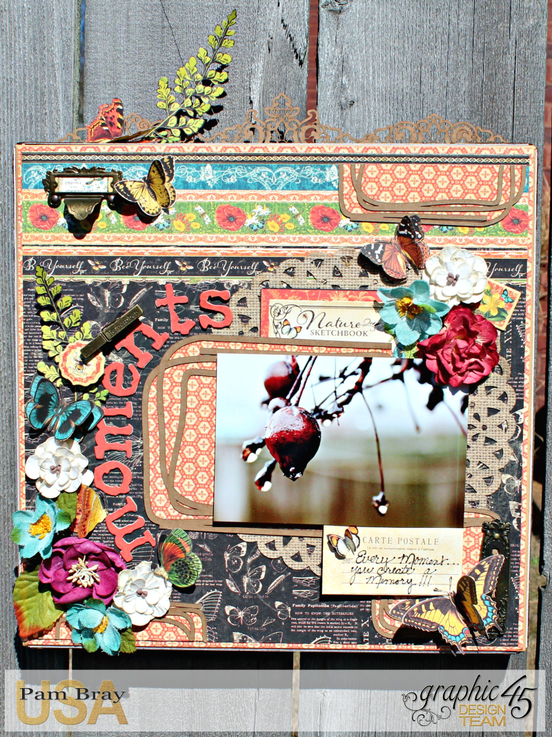 Graphic 45 Nature Sketchbook Frame by Pam Bray with Tutorial Photo 1_3970