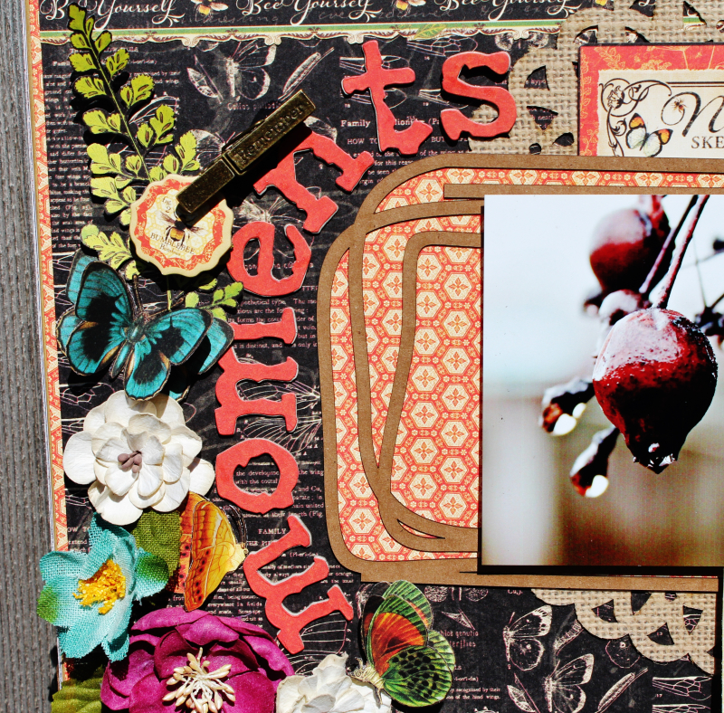 Graphic 45 Nature Sketchbook Frame by Pam Bray with Tutorial Photo 7_3966
