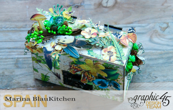 Box And Album Nature Sketchbook by Marina Blaukitchen Product by Graphic 45 photo 2