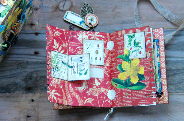 Box And Album Nature Sketchbook by Marina Blaukitchen Product by Graphic 45 photo 21