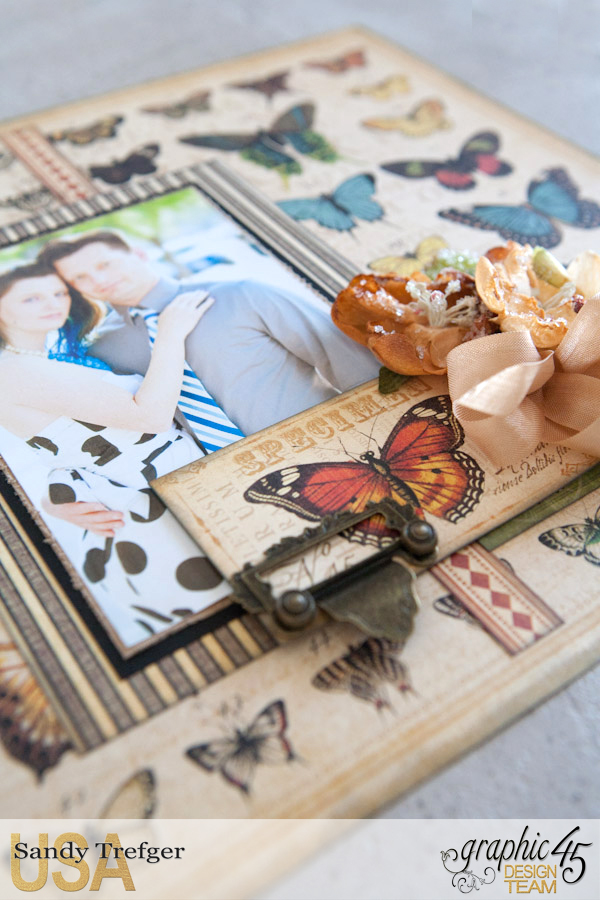 Butterfly Layout  Olde Curiosity Shoppe  by Sandy Trefger  Product by Graphic 45  Photo 002