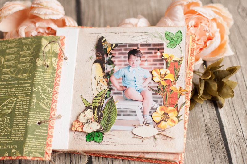 Mini album-Nature Sketchbook- Lena Astafeva-product by Graphic 45-29