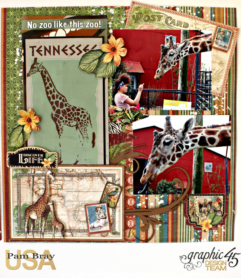 Graphic 45 Safari Adventure Double Layout with Tutorial by Pam Bray - Photo 4_5116