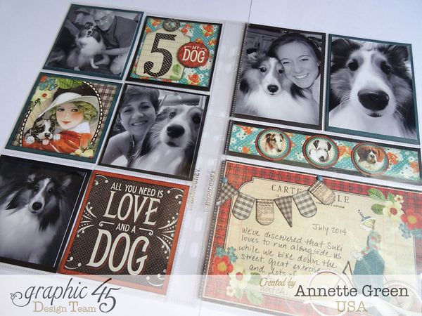 Raining-Cats-_-Dogs-Pocket-Pages-Graphic-45-Annette-Green-1-of-5