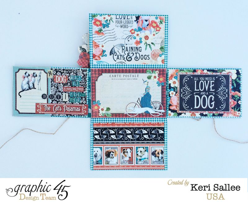 G45_Nov14_Raining Cats and Dogs_Wallet_Open 4