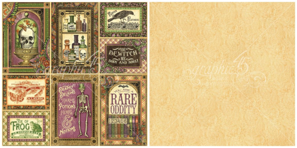"""Cabinet of Curiosities"" from Rare Oddities - This new collection will be in stores in late May #graphic45 #sneakpeeks"