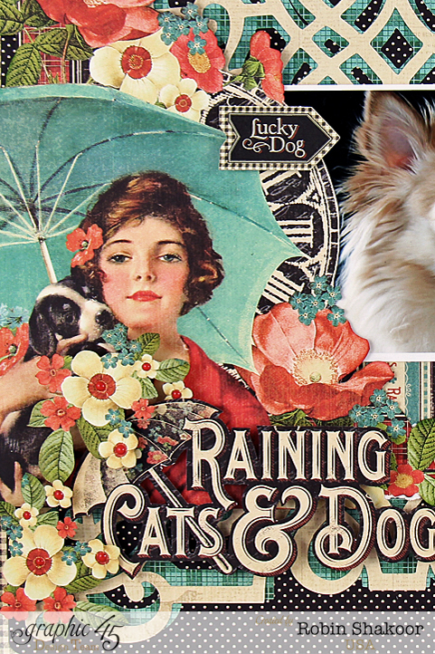 Raining Cats and Dogs Layout, Raining Cats and Dogs, by Robin Shakoor, Product by Graphic 45