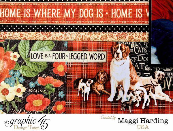 Layout Argo, Raining Cats _ Dogs, Maggi Harding, tutorial, Graphic 45 (1)