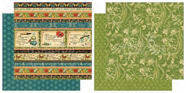 5 & 6  from Nature's Sketchbook, a new collection from Graphic 45