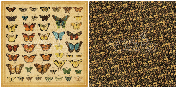 9 - Butterfly Specifics, a page from Olde Curiosity Shoppe, a Deluxe Collector's Edition from Graphic 45!