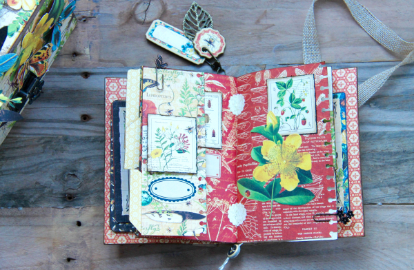 Box And Album Nature Sketchbook by Marina Blaukitchen Product by Graphic 45 photo 20