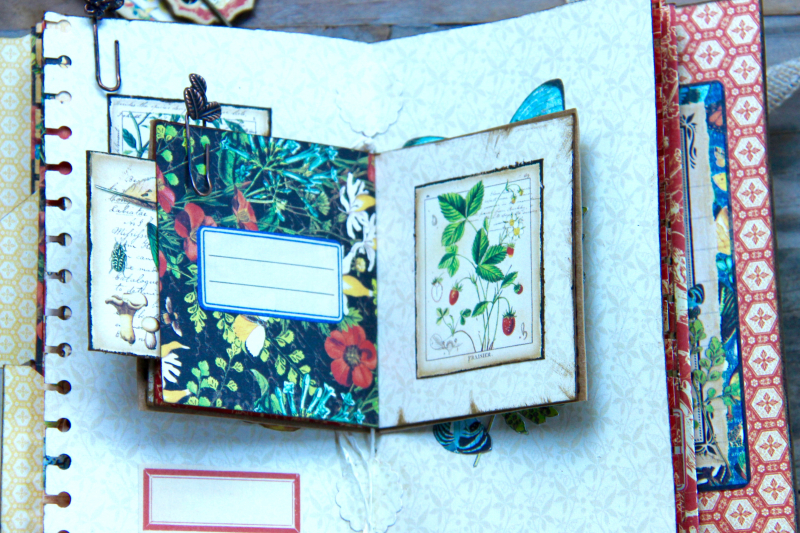 Box And Album Nature Sketchbook by Marina Blaukitchen Product by Graphic 45 photo 27