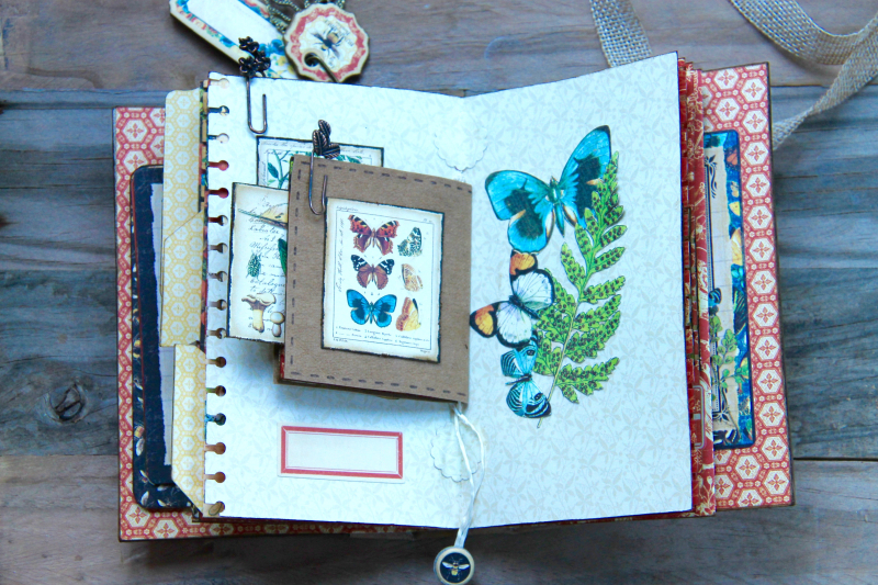 Box And Album Nature Sketchbook by Marina Blaukitchen Product by Graphic 45 photo 29