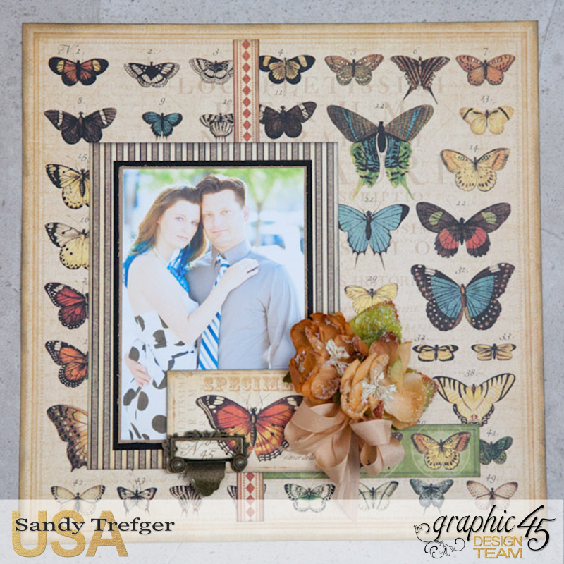 Butterfly Layout  Olde Curiosity Shoppe  by Sandy Trefger  Product by Graphic 45  Photo 001