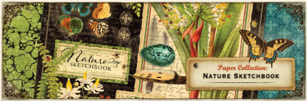 Nature-sketchbook banner Graphic 45