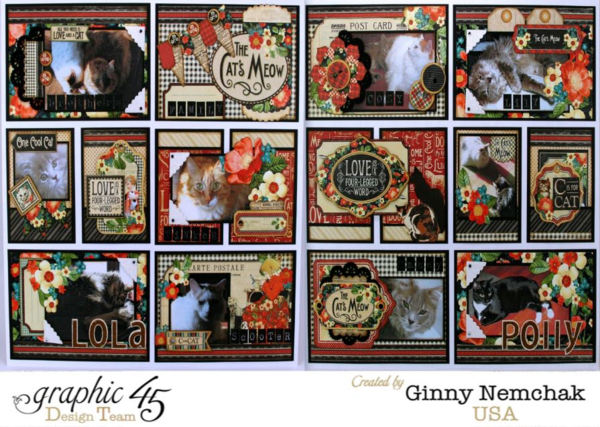 Ginny Nemchak Pocket Scrapbooking Raining Cats & Dogs Layout Graphic 45