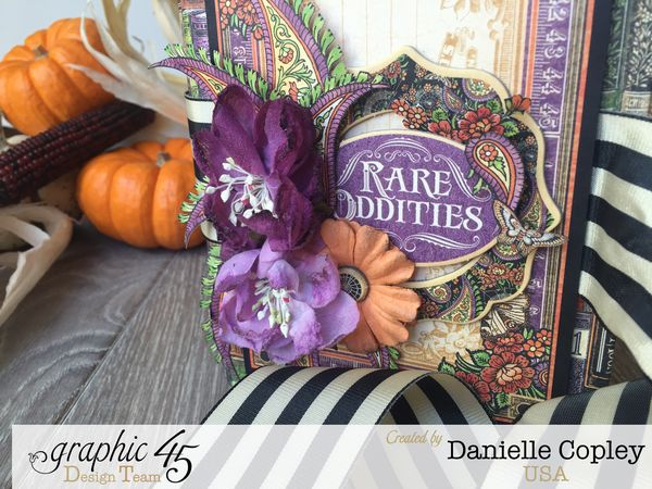 Rare Oddities Tri-Fold Brag Book, Rare Oddities, by Danielle Copley, product by Graphic 45, photo 1