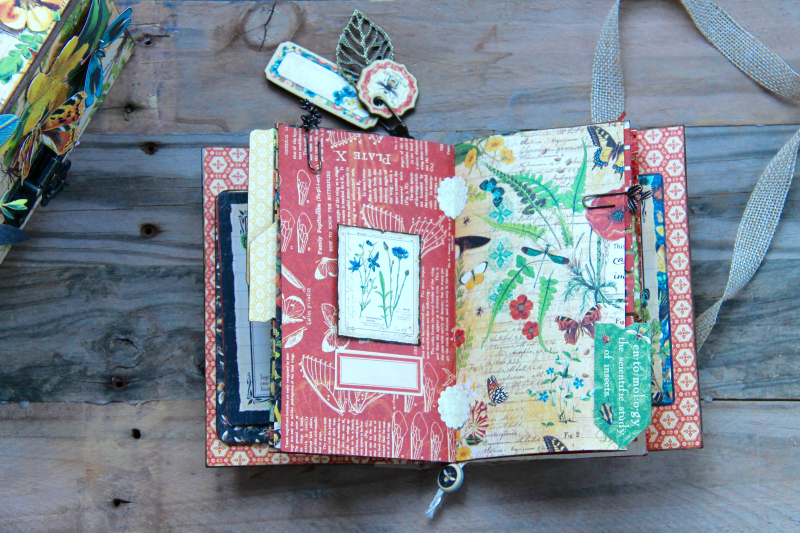 Box And Album Nature Sketchbook by Marina Blaukitchen Product by Graphic 45 photo 19