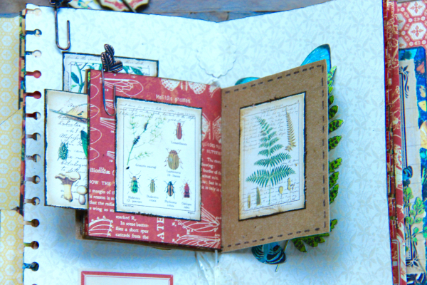 Box And Album Nature Sketchbook by Marina Blaukitchen Product by Graphic 45 photo 28