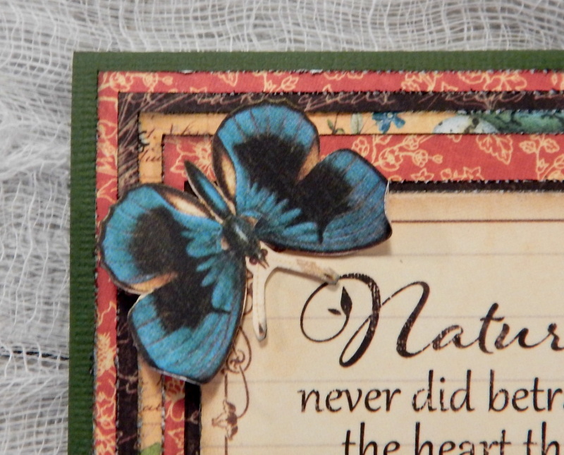 Just Because Card Set  Nature Sketchbook  By Katelyn Grosart  Product By Graphic 45  Photo 4